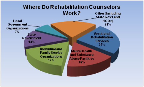 What can I do with a Masters in HR  Rehabilitation Counseling?  The